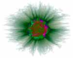 Artificial Genome Flower Beta digital art