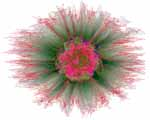 Artificial Genome Flower Gamma digital art